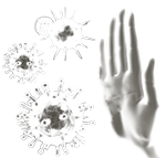 immunOPTIMAL